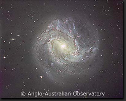 Image Provided By Anglo-Austrailian Observatory