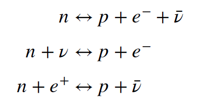 Three equations. First: One neutron yields one proton, one electron and one antineutrino, and the other way around. Second: one neutron plus one neutrino yields one positron and one electron, and the other way around. Third: one neutron and one positron yields one proton and one antineutrino, and the other way around.
