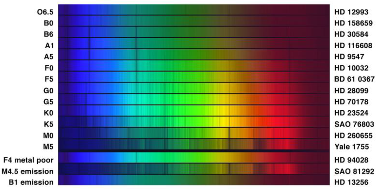 Light spectra for types of main sequence stars, graphically showing the absorption lines characteristic of each type.